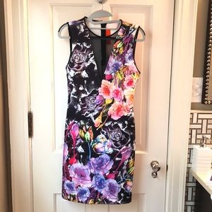 Clover Canyon dress, w/black mesh V in front